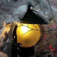Фонарь в снегу :: Татьяна Панчешная