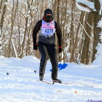 Лыжный спецназ :: Андрей Заломленков