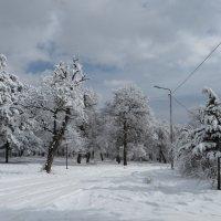 Зима в Коджори :: Наталья (D.Nat@lia)