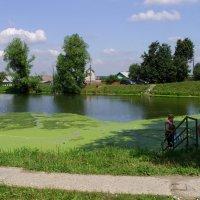 Сельский пруд :: Виктор Мухин