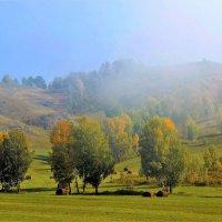 Осенний пейзаж :: Сергей Чиняев