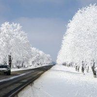 Зимняя дорога :: Владимир Богославцев(ua6hvk)
