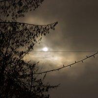 eclipse :: Ульяна Куприй