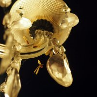 прерванный полёт личинки термита :: Александр