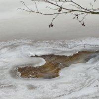 зимние узоры февраля :: Михаил Жуковский