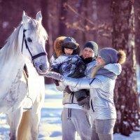 Русская зима :: Любовь Б