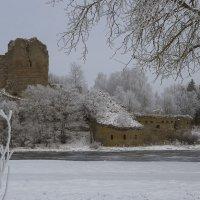Ивангородская крепость :: leo yagonen