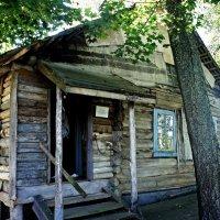 Дом-музей писателя Сергея Довлатова в Пушкинских Горах :: Елена Павлова (Смолова)