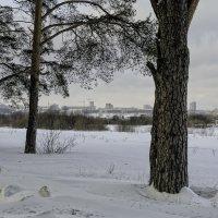 Заречный парк :: Василий Ахатов