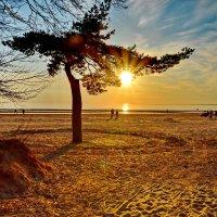 слегка подглядывало солнце :: Валентина Папилова