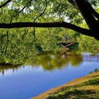 В сердце парка... :: Sergey Gordoff