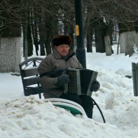ОДИНОКАЯ  БРОДИТ  ГАРМОНЬ... :: Галина