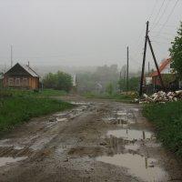 Последождевая улица. Деревня, Август. :: Михаил Полыгалов