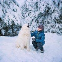 зима :: Ксения Захарова