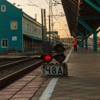 Муза дальних странствий :: Дмитрий Костоусов