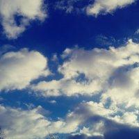 Облака-белогривые лошадки :: Daria Zhdanova
