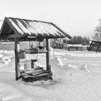 В деревне Ворзогоры,Архангельской области. :: Марина Никулина