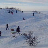 На дюнах зимой :: Ирина Л