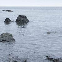 Море...Не волнуется. :: Елена Зудова