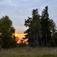 Леппясюря. Обычный закат. :: Владимир Ильич Батарин