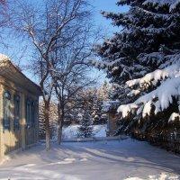 Зимний день :: Надежда