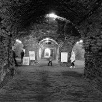Казематы форта №5 (4) :: Дмитрий Олегович