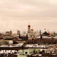 Московские  верхушки :: Лариса Журавлева