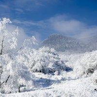 Зимой в горах :: Владимир Богославцев(ua6hvk)