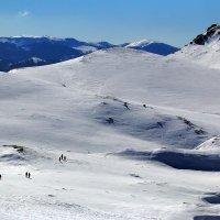 На верхнем плато Чатыр-Дага :: Михаил Баевский