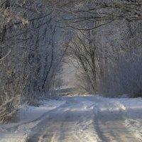 Зима... :: Ольга Степанова