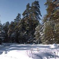 С зимой прощается февраль... :: Лесо-Вед (Баранов)
