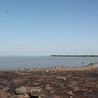 побережье моря :: maikl falkon