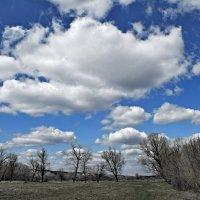 Облака... :: владимир