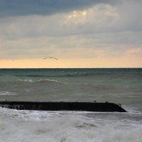 Вечер. Море. Закат. :: Дмитрий Петренко