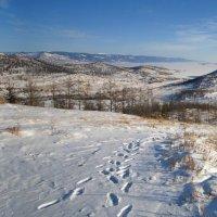 Впереди озеро Байкал :: Анатолий Иргл