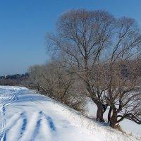 Предчувствием весны речные берега... :: Лесо-Вед (Баранов)