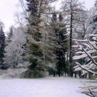 Парк зимой. :: Алексей Цветков