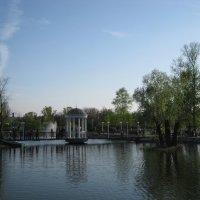 В парке Запорожья :: Ирина Диденко