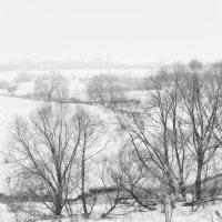 в конце зимы... :: Moscow.Salnikov Сальников Сергей Георгиевич