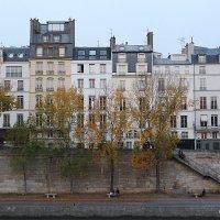 Набережные Сены в Париже :: Фотограф в Париже, Франции Наталья Ильина