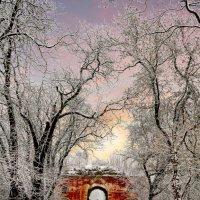 Зима в Брестской крепости :: Вадим Качан