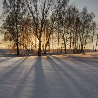 доброе утро страна! :: Николай Мальцев