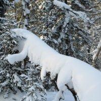 Снежный зверь неведомой породы :: Galaelina