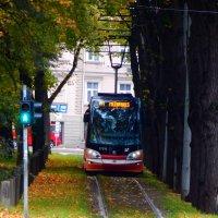 Рижский трамвай :: Максим Чернов