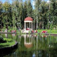 В парке на пруду :: Татьяна Пальчикова