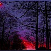 И.О. луны :: Андрей Зайцев