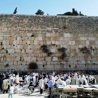 Jerusalem стена плача :: Anna Sokolovsky