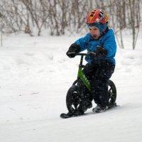 кому зима в радость :: StudioRAK Ragozin Alexey