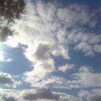 Небо, облака плывут :: Елена Семигина