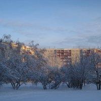 Морозным днем в городе :: Елена Семигина